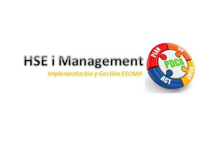 HSE i Management